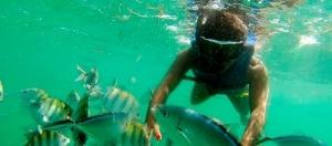snorkeling-tour-01