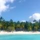 Excursion vers l'île de Saona