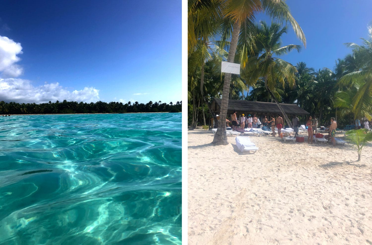 Saona Excursion Concept-Tours